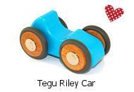 Tegu Riley Car